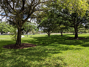 Oak Park Land Trust Conservation Easement Davie Florida March 2019