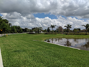 The conservation easement at the entrance or east side of Oak Park Davie Land Trust consservation easement
